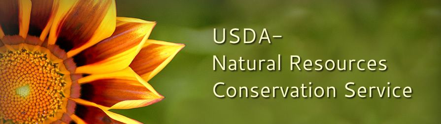 usda natural resources conservation service wexford conservation